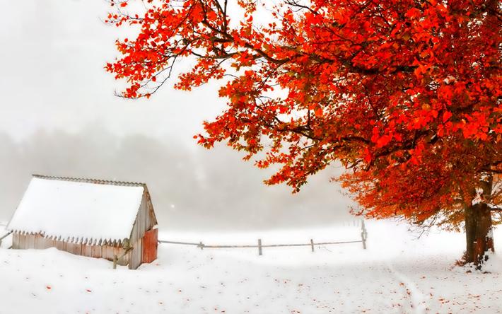 За есенно-зимния период